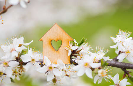 Wooden house with hole in form of heart surrounded by flowering branches of spring trees. Spring composition.