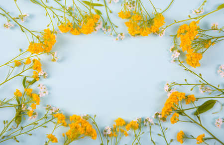 Spring frame made from little yellow and white flowers on light mint background. Seasonal blooming card with empty space.