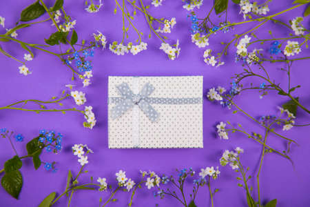 White gift box surrounded with blue and white little flowers on violet background. Spring present with flower frame.