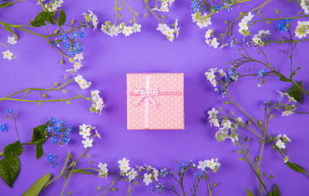 Pink gift box surrounded with blue and white little flowers on violet background. Spring present with flower frame.