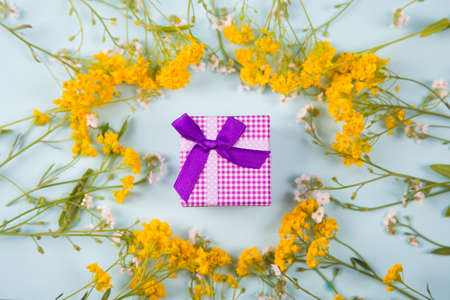 Purple gift box surrounded with yellow and white little flowers on light mint background. Spring present with flower frame.