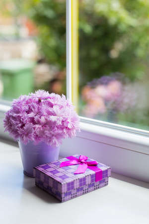 Little purple bucket with tender bouquet of beautiful pink carnation with violet gift box near window in daylight. Spring card. Stock Photo