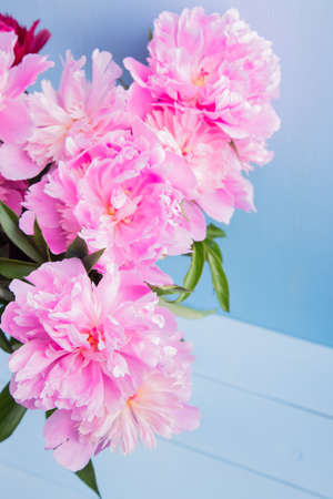 Lush bouquet of beautiful pink peonies in glass vase on blue wooden background. Spring gift.