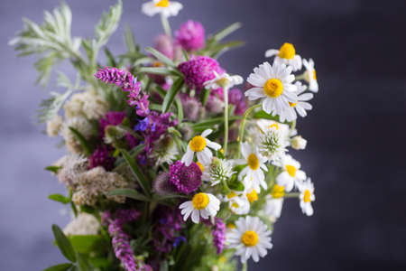 Festive spring bouquet of chamomiles and various herbs indoor on dark background.