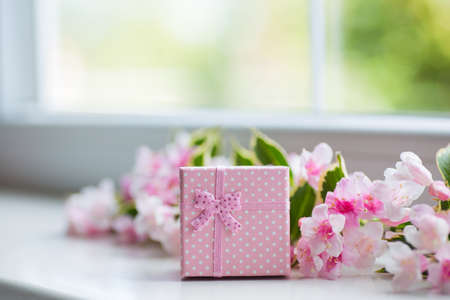 Pink gift box with blooming tender Weigela branch near window in daylight. Spring composition.