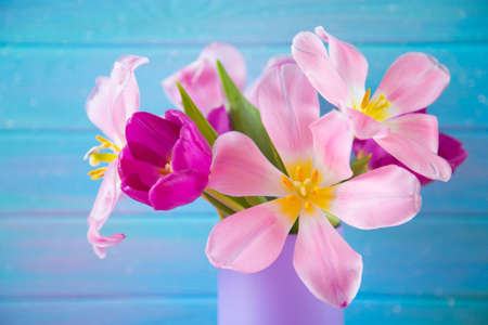 Tender bouquet of beautiful pink tulips in lilac vase on blue wooden background. Concept of spring blossom.
