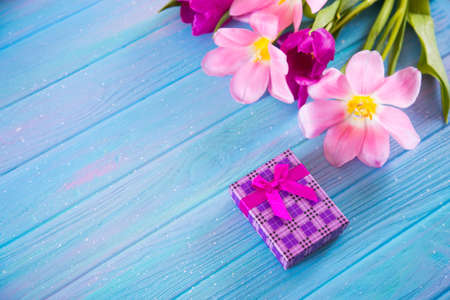 Violet gift box and tender bouquet of beautiful pink tulips on creative blue wooden background. Concept of spring gift.