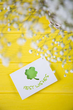 Greeting card with four-leaf clover and fresh bouquet of white gypsophila on yellow wooden background. Concept of St.Patricks Day gift