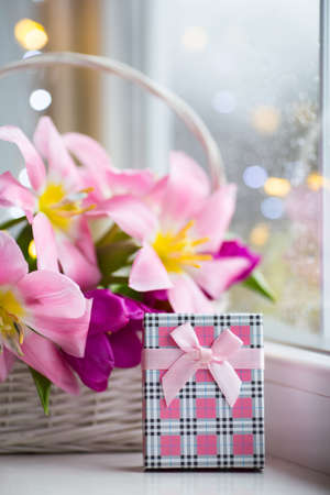 Gift box and tender bouquet of beautiful pink tulips in white basket near window with raindrops in the daylight. Spring blooming flowers with garland lights on background. Concept of Mothers day gift.