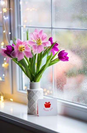 Greeting thankful card and tender bouquet of beautiful pink tulips in white vase near window with raindrops in the daylight. Spring blooming flowers with garland lights on background. Stock Photo