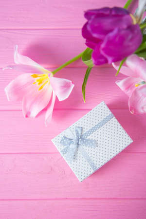 White gift box and tender bouquet of beautiful pink tulips on pink wooden background. Mothers day present. Stock Photo