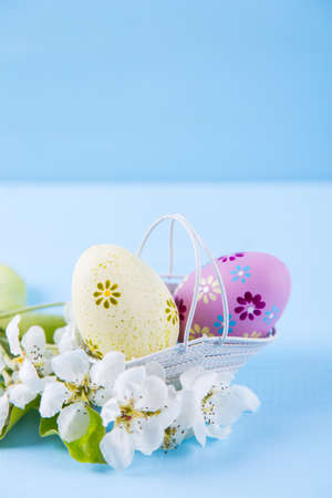 Two painted yellow and purple Easter eggs in basket with white spring cherry flowers on light blue background. Copy space.