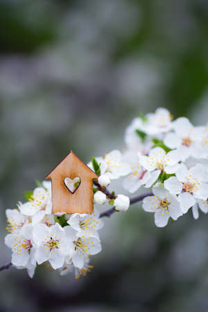 Closeup wooden house with hole in form of heart surrounded by white flowering branches of spring trees. Spring vibrant composition with copy space. Concept of sweet home. Banque d'images