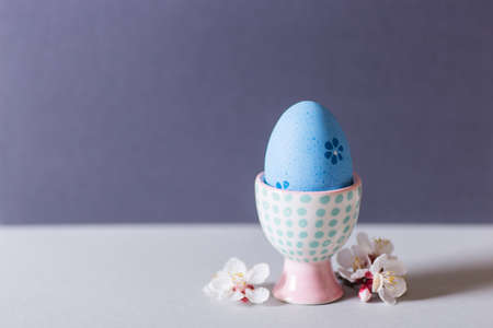 Closeup colorful painted Easter egg in vibrant modern egg stand surrounded by white flowering tree branches on gray background. Home minimalistic composition with copy space. Banque d'images