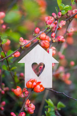 Closeup wooden house with hole in form of heart surrounded by pink flowering branches of spring trees. Spring vibrant composition with copy space. Concept of sweet home.