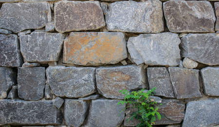Stones in row form rocky wall