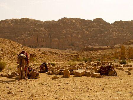 quenching: Petra - Jordan