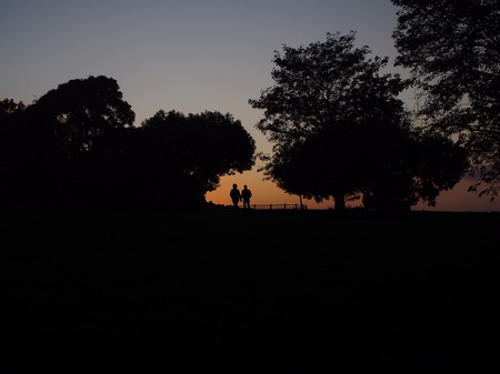 the backlighting: One couple walking in the park with backlighting