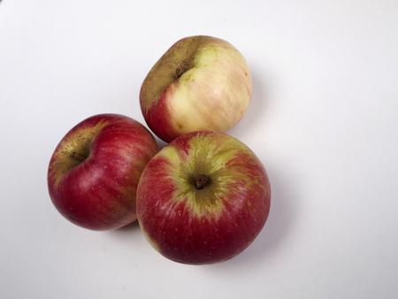 pome: Three Akane apple on white background Stock Photo