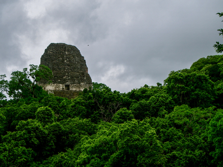 Tikal national park in guatemala Stock Photo