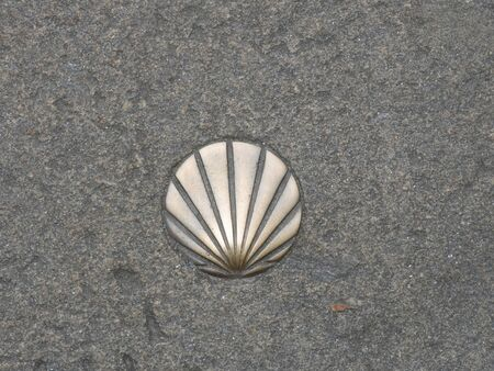 St. James shell symbol of the way
