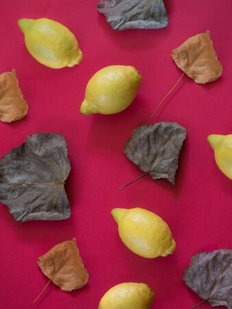 Lemons and fall leaves  pattern on red background