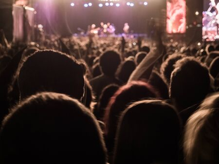 People enjoying of a music concert outdoors at the night Фото со стока