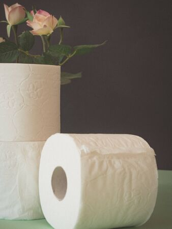 Still life of toilet paper on green and black background