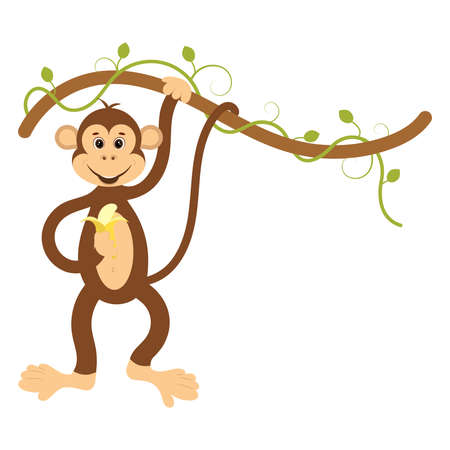 Monkey with a banana on a vine. Flat vector illustration.