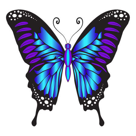 Beautiful bright blue delicate butterfly. Vector illustration isolated on white background.