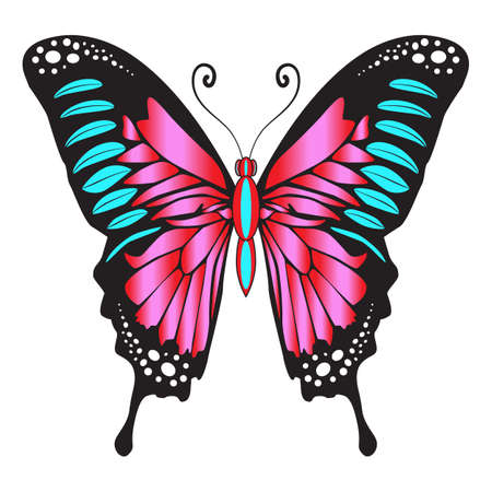 Bright beautiful decorative pink butterfly. Vector illustration isolated on white background.