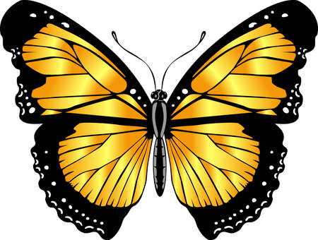 Beautiful bright yellow butterfly. Vector illustration isolated.
