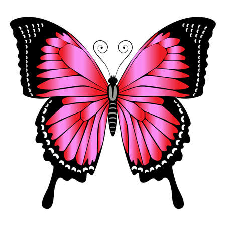 Beautiful bright red butterfly. Vector illustration isolated.