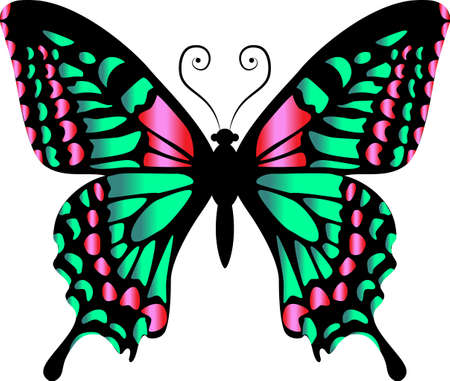 Beautiful bright green butterfly. Vector illustration isolated.