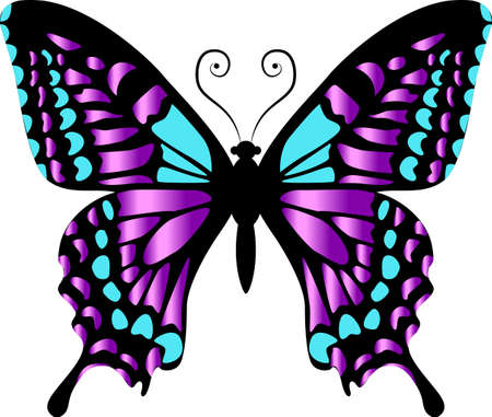 Beautiful bright purple butterfly. Vector illustration isolated.
