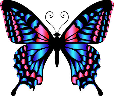 Beautiful bright blue pink butterfly. Vector illustration isolated.