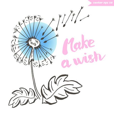 dandewlion wish Illustration
