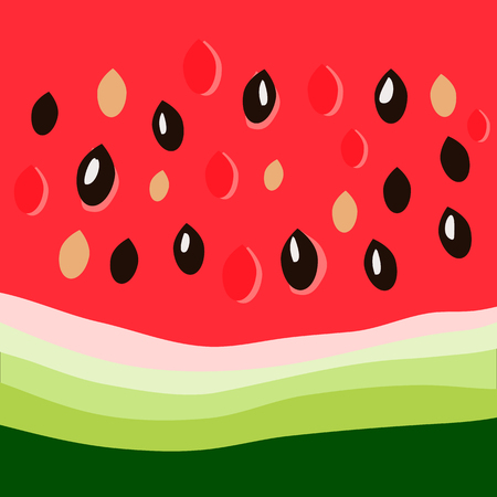 watermelon close up Illustration