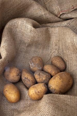 some potatoes on the sacking cloth Stock Photo
