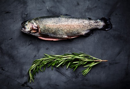 saturated color: Raw fresh gutted rainbow trout with sprig of rosemary. Preparation for cooking delicious fish on dark background. Top view, saturated color, place for text Stock Photo