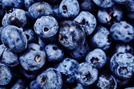 Shot of natural, freshly picked blueberries. Organic, eco friendly food for healthy lifestyle. A lot of berries as background. Selective focus, soft edge, bright deep colors, close-up shot. Stock Photo