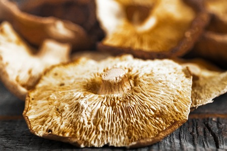 Close up group of organic dried shiitake japanese mushrooms on wood background.