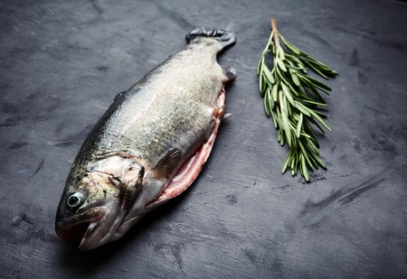 gutted: Raw fresh gutted rainbow trout with sprig of rosemary. Preparation for cooking delicious fish on dark background.