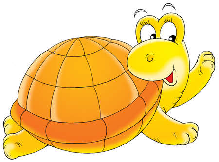 zoological: Yellow turtle
