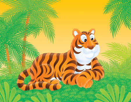 a tiger lying on the grass in the jungle photo