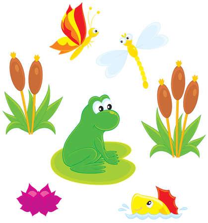 canne: rane, libellule, farfalle, pesci, ninfea e la canna Vettoriali