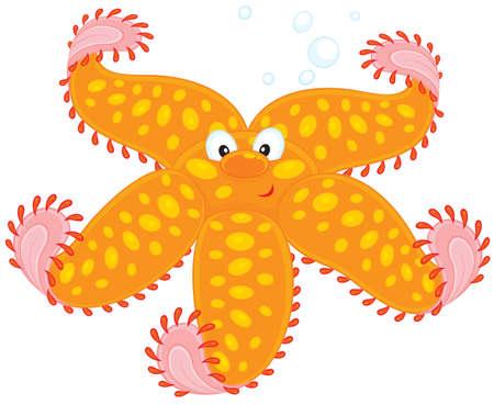 Starfish Stock Vector - 11751125
