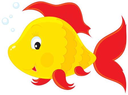 toy fish: Fish Illustration