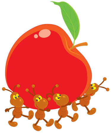 red ant: Ants carrying a red apple