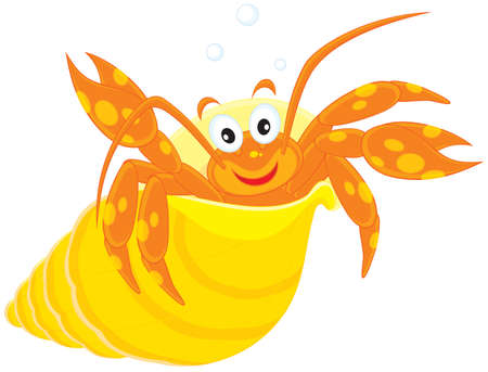 Sea crawfish in his shell Vector